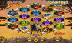 Diamond Rhino Progressive Jackpot Slot
