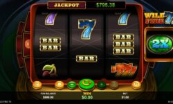 Wild Fire 7s Online Slot Game